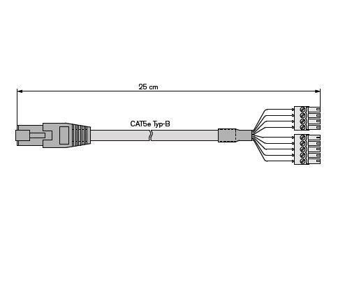 Laun IT Gantner 1103383_GT7-Ethernet-POE-Cable-25-cm_0.jpg