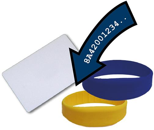 Laun IT Gantner 478322_LEGIC-Coding-Customer-Tags_0.jpg
